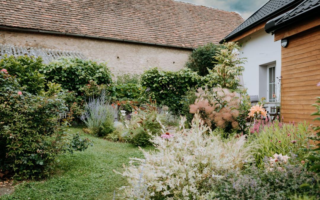 Zahrada v červenci